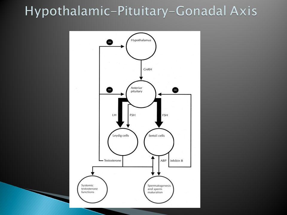  1.Production ◦ Hypothalamus  Congenital abnormalities of hypothalamus  e.g.