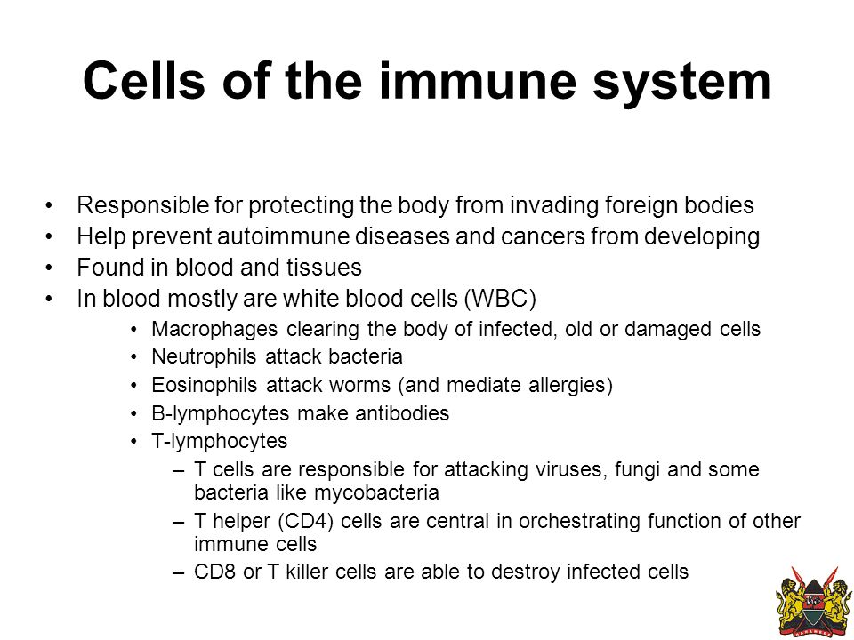 Cells of the immune system Responsible for protecting the body from invading foreign bodies Help prevent autoimmune diseases and cancers from developing Found in blood and tissues In blood mostly are white blood cells (WBC) Macrophages clearing the body of infected, old or damaged cells Neutrophils attack bacteria Eosinophils attack worms (and mediate allergies) B-lymphocytes make antibodies T-lymphocytes –T cells are responsible for attacking viruses, fungi and some bacteria like mycobacteria –T helper (CD4) cells are central in orchestrating function of other immune cells –CD8 or T killer cells are able to destroy infected cells