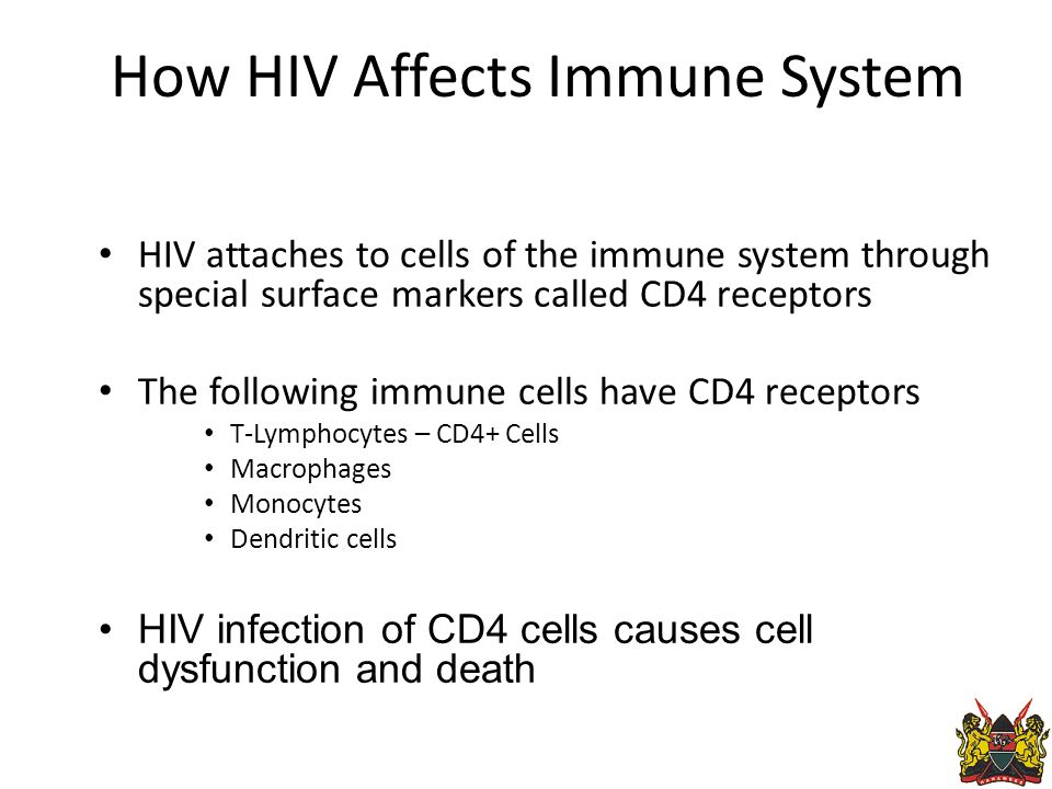 How HIV Affects Immune System HIV attaches to cells of the immune system through special surface markers called CD4 receptors The following immune cells have CD4 receptors T-Lymphocytes – CD4+ Cells Macrophages Monocytes Dendritic cells HIV infection of CD4 cells causes cell dysfunction and death