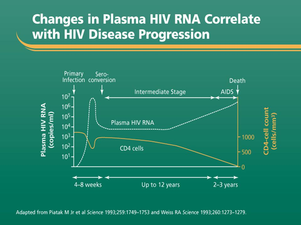 Host immune response during HIV infection Primary HIV Infection – On exposure, there is a 2-4 week period of intense viral replication and widespread dissemination of virus characterized by High plasma viral load (RNA) Rapid decline in CD4 count In some cases an acute illness occurs – Lasts from 1-2 weeks, but it is rarely diagnosed – Symptoms if present resemble those of other viral illnesses; requires high index of suspicion Symptom resolution with reduction in plasma viremia due to development of an immune response and antibodies to the virus