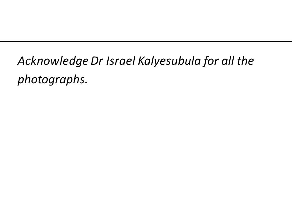 Acknowledge Dr Israel Kalyesubula for all the photographs.