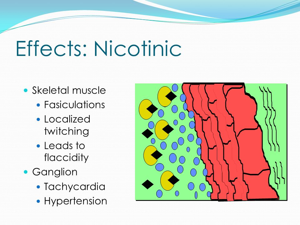 Effects: Nicotinic Skeletal muscle Fasiculations Localized twitching Leads to flaccidity Ganglion Tachycardia Hypertension