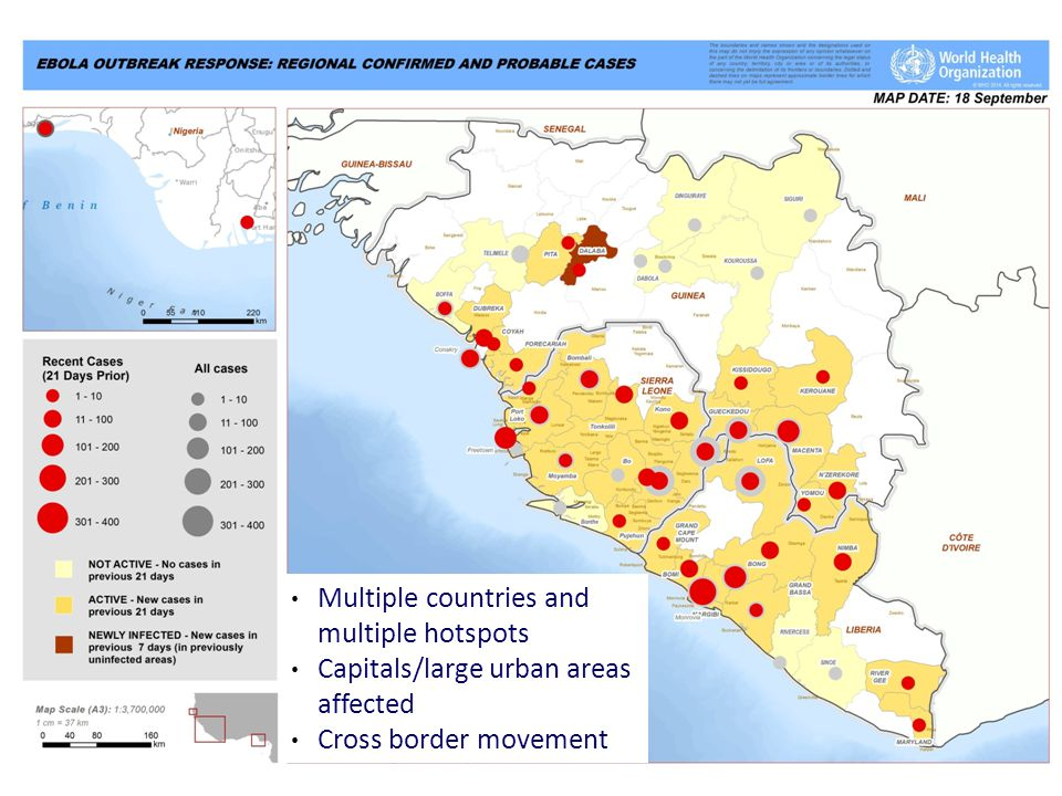 Multiple countries and multiple hotspots Capitals/large urban areas affected Cross border movement