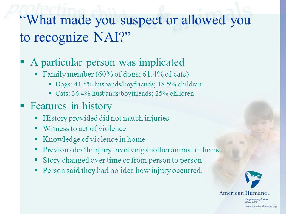 What made you suspect or allowed you to recognize NAI  A particular person was implicated  Family member (60% of dogs; 61.4% of cats)  Dogs: 41.5% husbands/boyfriends; 18.5% children  Cats: 36.4% husbands/boyfriends; 25% children  Features in history  History provided did not match injuries  Witness to act of violence  Knowledge of violence in home  Previous death/injury involving another animal in home  Story changed over time or from person to person  Person said they had no idea how injury occurred.