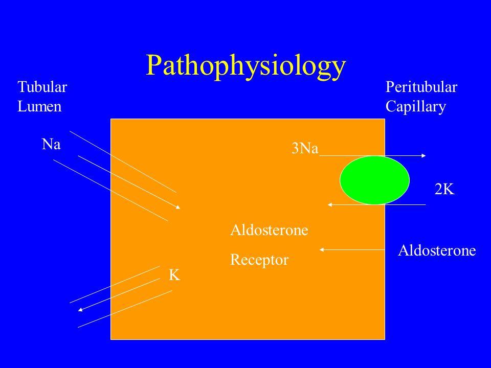 Pathophysiology Tubular Lumen Peritubular Capillary 3Na 2K Na K Aldosterone Receptor