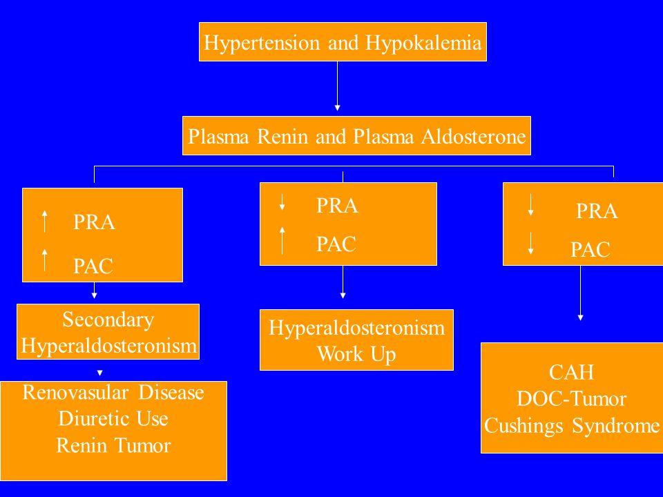 Hypertension and Hypokalemia Plasma Renin and Plasma Aldosterone PRA PAC Secondary Hyperaldosteronism Renovasular Disease Diuretic Use Renin Tumor PRA PAC Hyperaldosteronism Work Up PRA PAC CAH DOC-Tumor Cushings Syndrome