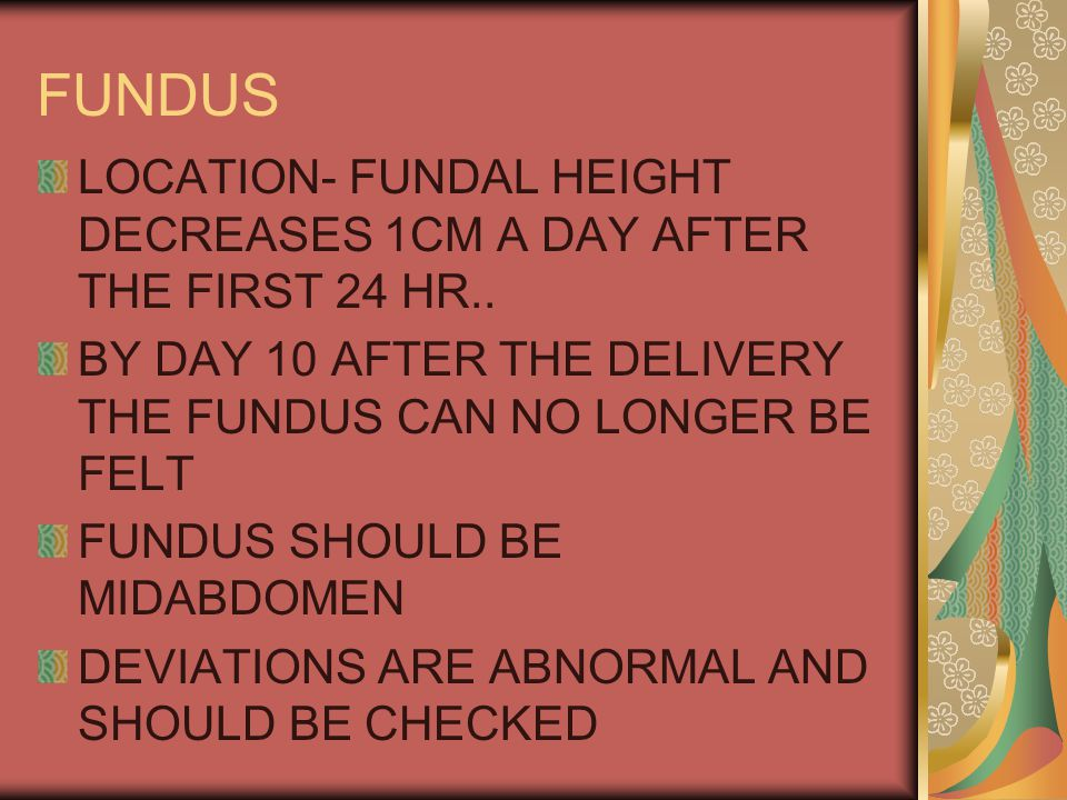 FUNDUS LOCATION- FUNDAL HEIGHT DECREASES 1CM A DAY AFTER THE FIRST 24 HR..