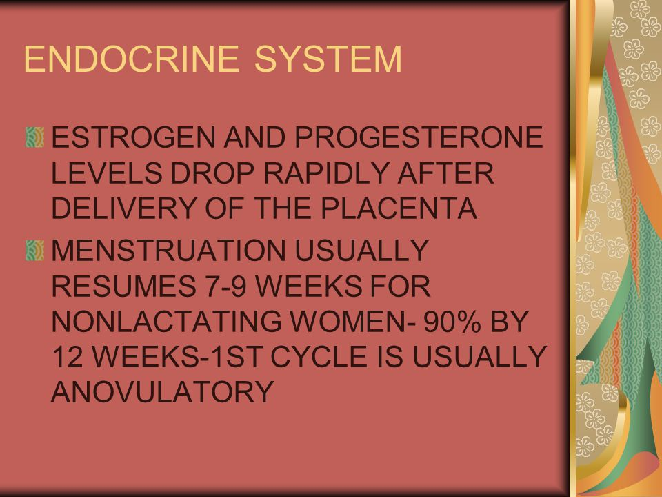 ENDOCRINE SYSTEM ESTROGEN AND PROGESTERONE LEVELS DROP RAPIDLY AFTER DELIVERY OF THE PLACENTA MENSTRUATION USUALLY RESUMES 7-9 WEEKS FOR NONLACTATING WOMEN- 90% BY 12 WEEKS-1ST CYCLE IS USUALLY ANOVULATORY