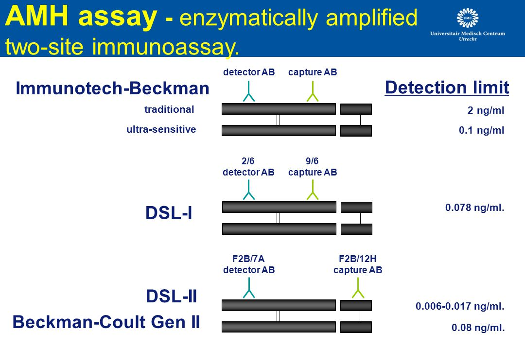 DSL-I AMH assay - enzymatically amplified two-site immunoassay.