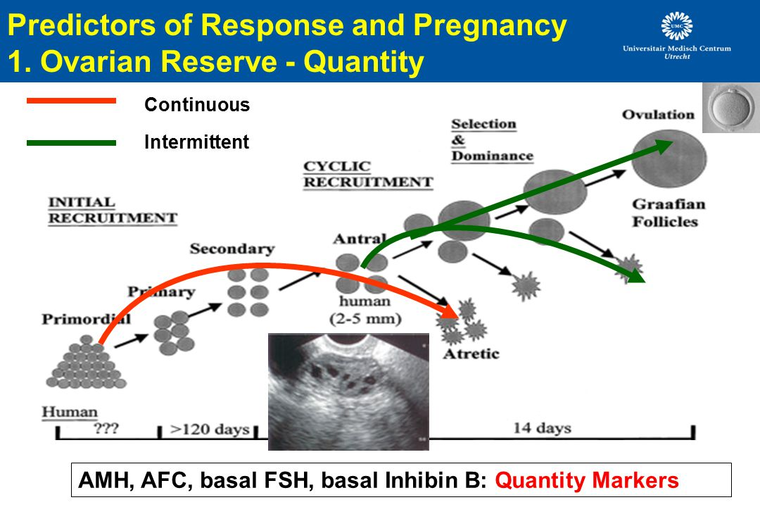 Predictors of Response and Pregnancy 1.