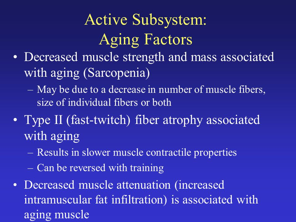 Active Subsystem: Aging Factors Decreased muscle strength and mass associated with aging (Sarcopenia) –May be due to a decrease in number of muscle fibers, size of individual fibers or both Type II (fast-twitch) fiber atrophy associated with aging –Results in slower muscle contractile properties –Can be reversed with training Decreased muscle attenuation (increased intramuscular fat infiltration) is associated with aging muscle