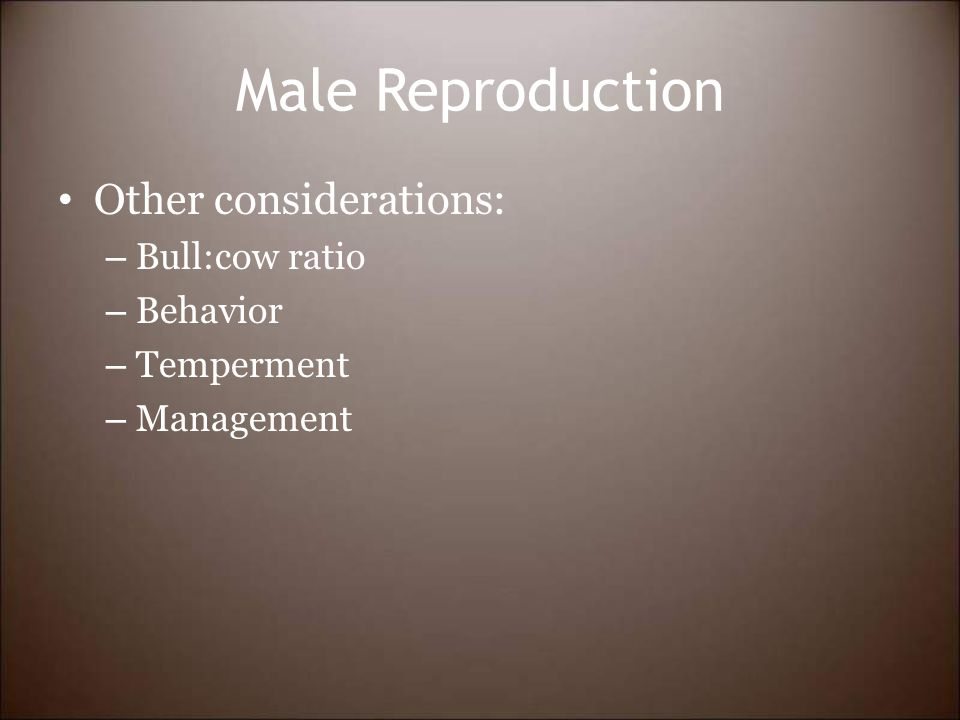 Male Reproduction Other considerations: – Bull:cow ratio – Behavior – Temperment – Management