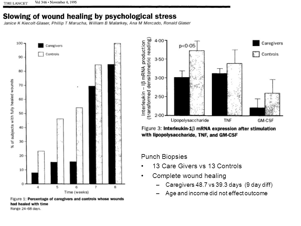 Punch Biopsies 13 Care Givers vs 13 Controls Complete wound healing –Caregivers 48.7 vs 39.3 days (9 day diff) –Age and income did not effect outcome