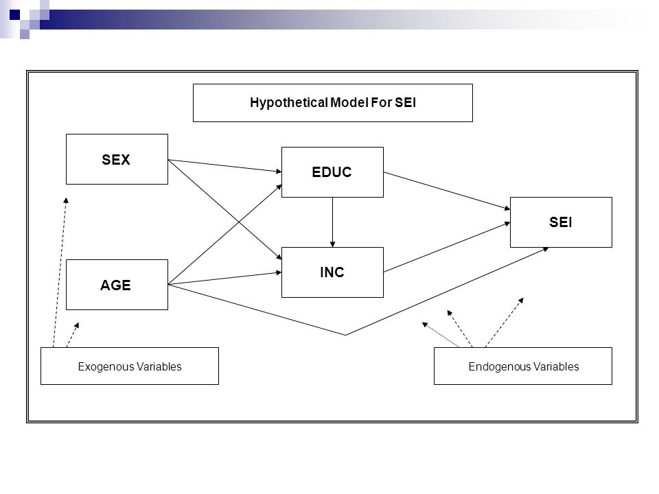 SEI SEX AGE EDUC INC Exogenous VariablesEndogenous Variables Hypothetical Model For SEI