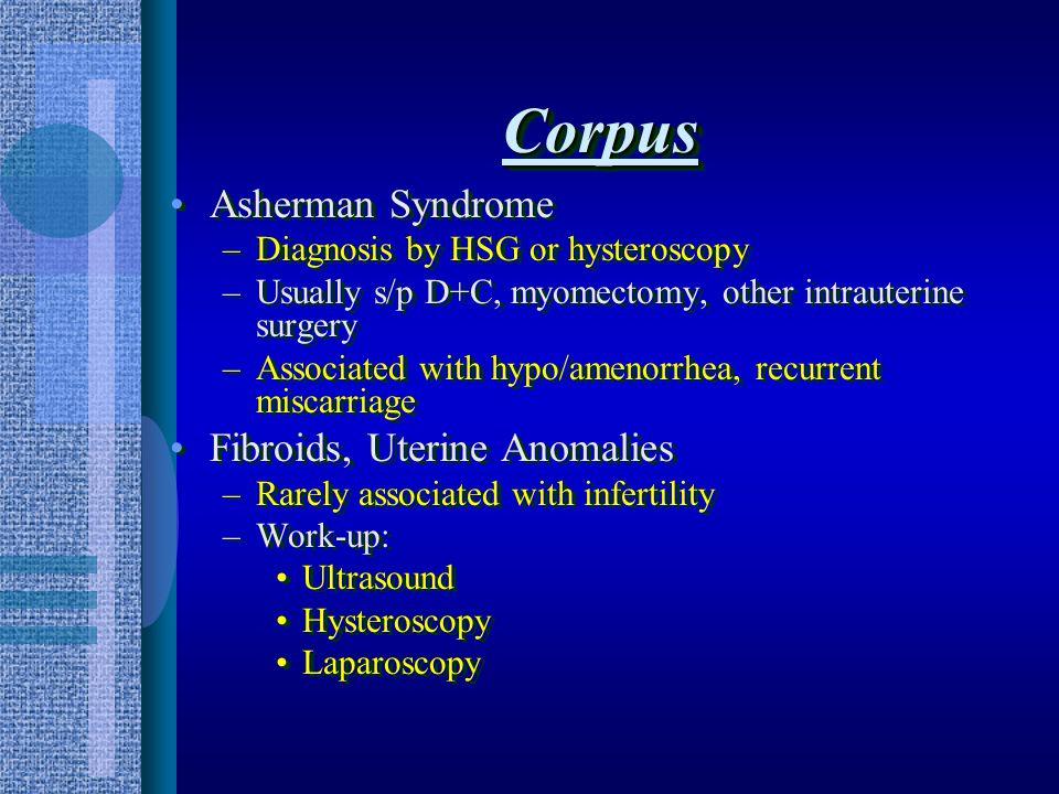 Uterine Corpus