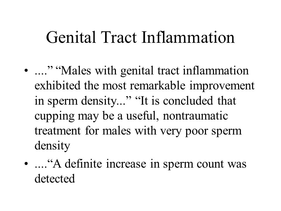 Genital Tract Inflammation.... Males with genital tract inflammation exhibited the most remarkable improvement in sperm density... It is concluded that cupping may be a useful, nontraumatic treatment for males with very poor sperm density.... A definite increase in sperm count was detected