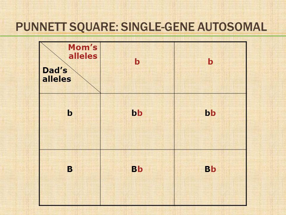 PUNNETT SQUARE: SINGLE-GENE AUTOSOMAL Mom's alleles Dad's alleles bb bbb BBbBbBbBb