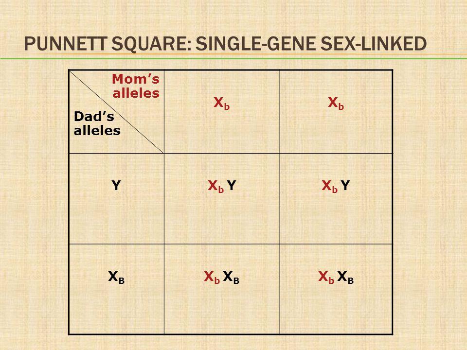 PUNNETT SQUARE: SINGLE-GENE SEX-LINKED Mom's alleles Dad's alleles XbXb XbXb YX b Y XBXB X b X B