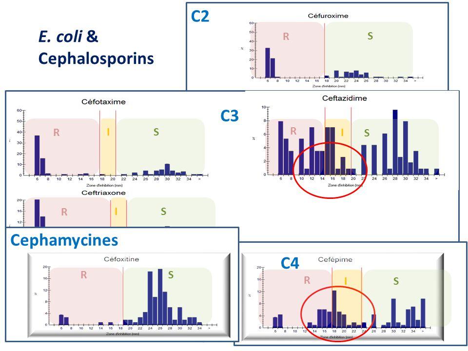 R S C2 E. coli & Cephalosporins I R S I R S I S R C3 C4 IS R SR Cephamycines