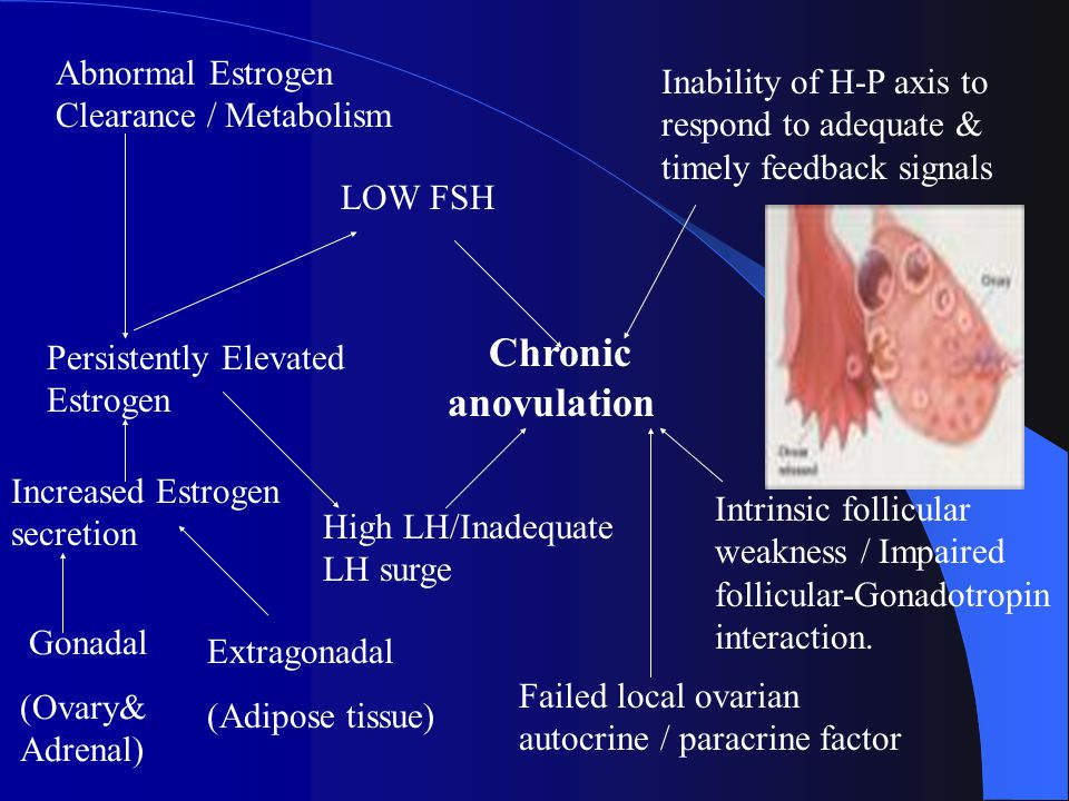 Chronic anovulation High LH/Inadequate LH surge LOW FSH Inability of H-P axis to respond to adequate & timely feedback signals Intrinsic follicular weakness / Impaired follicular-Gonadotropin interaction.