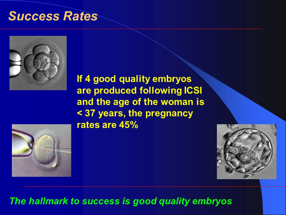 Success Rates If 4 good quality embryos are produced following ICSI and the age of the woman is < 37 years, the pregnancy rates are 45% The hallmark to success is good quality embryos