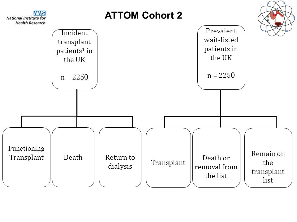 Prevalent wait-listed patients in the UK n = 225 0 Transplant Death or removal from the list Remain on the transplant list Incident transplant patients 1 in the UK n = 225 0 Functioning TransplantDeathReturn to dialysis ATTOM Cohort 2
