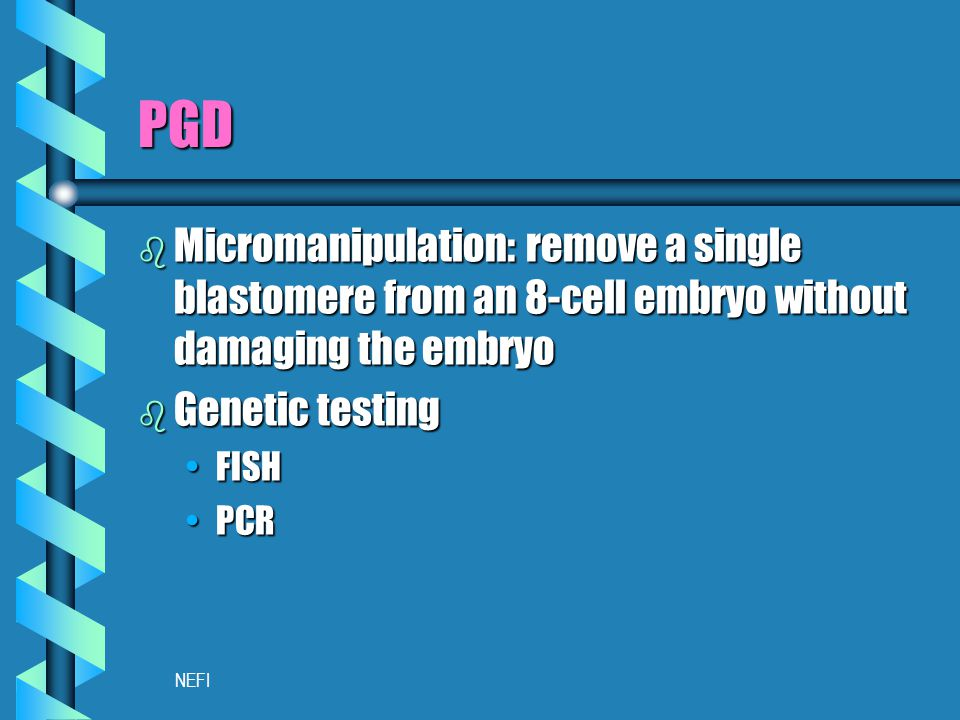 NEFI PGD b Micromanipulation: remove a single blastomere from an 8-cell embryo without damaging the embryo b Genetic testing FISHFISH PCRPCR