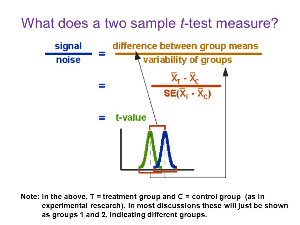 What does a two sample t-test measure.