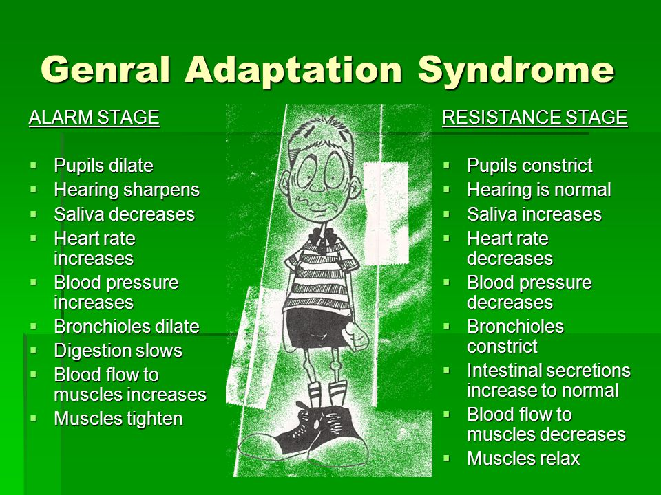 GAS (General Adaptation Syndrome) Body's response to a stressor 1)Alarm Stage- body prepares for quick action as adrenaline is released into the bloodstream, heart rate & blood pressure increases, digestion slows, blood flows to muscles, respiration increases, pupils dilate & hearing sharpens, prepares to meet the demands 2)Resistance Stage- pulse, breathing rate & blood pressure return to normal, pupils contract and muscles relax ( If demands of a stressor are not met successfully, GAS continues) 3)Exhaustion Stage- body becomes fatigued from overwork, becomes vulnerable to disease