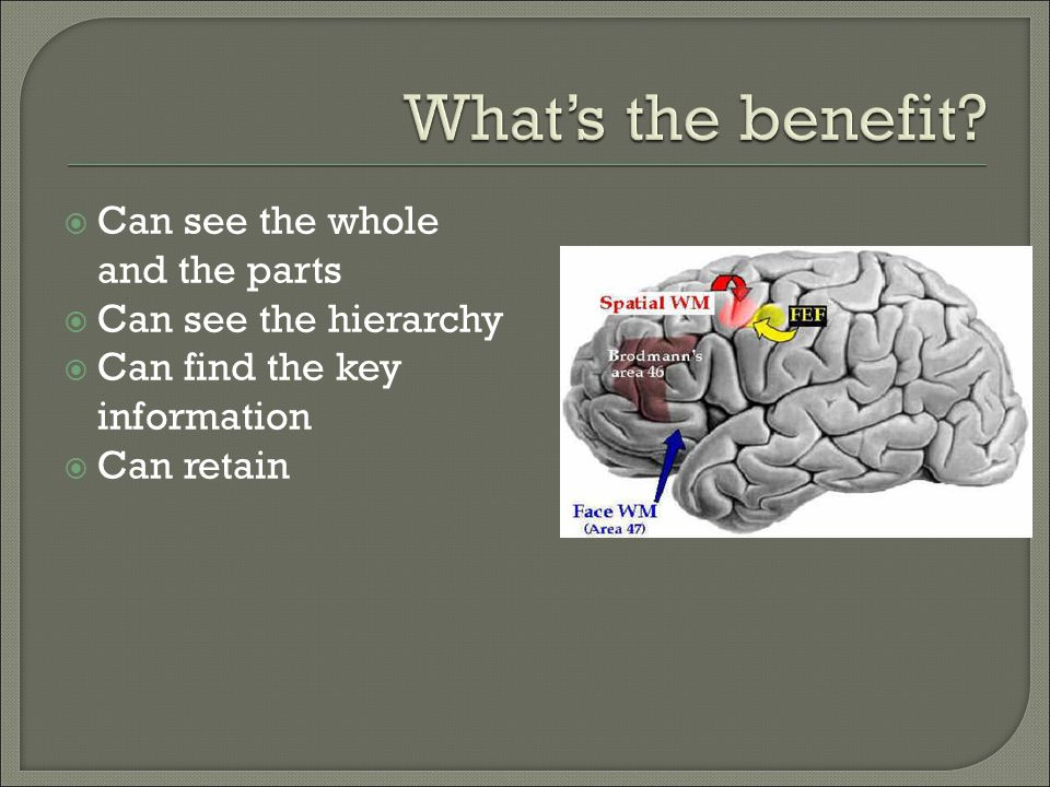  Can see the whole and the parts  Can see the hierarchy  Can find the key information  Can retain