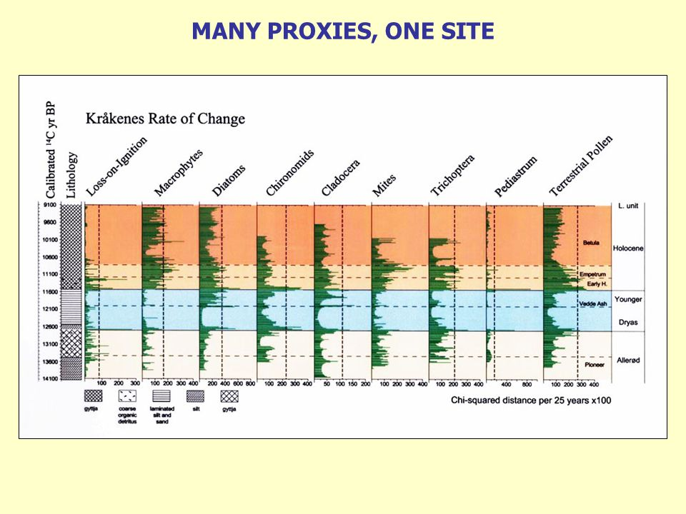 MANY PROXIES, ONE SITE
