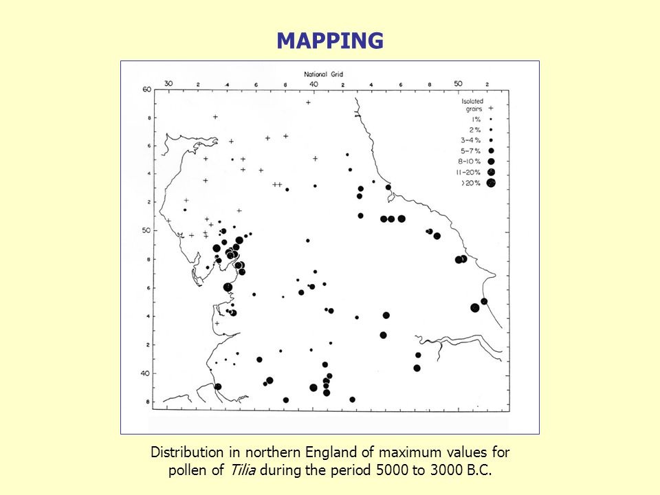 Distribution in northern England of maximum values for pollen of Tilia during the period 5000 to 3000 B.C.