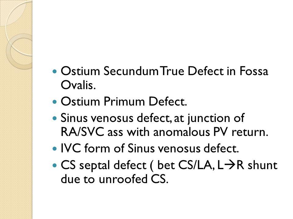 Ostium Secundum True Defect in Fossa Ovalis. Ostium Primum Defect.