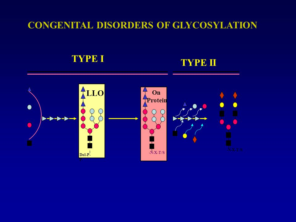 GLYCOSYLATION DEFECTS IDENTIFIED Year 99 98 979695 94 80- 93 01 00 15 5 10 205 10 15 20 N-linked Disorders Muscular Dystrophy 02-04 Number of defects