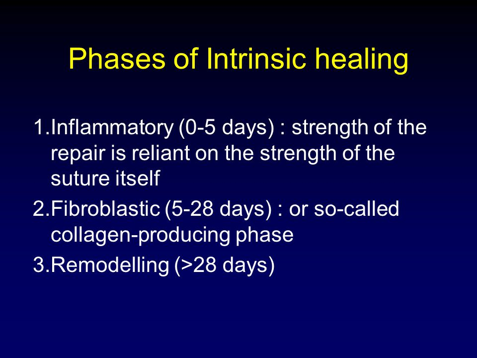 Phases of Intrinsic healing 1.Inflammatory (0-5 days) : strength of the repair is reliant on the strength of the suture itself 2.Fibroblastic (5-28 da