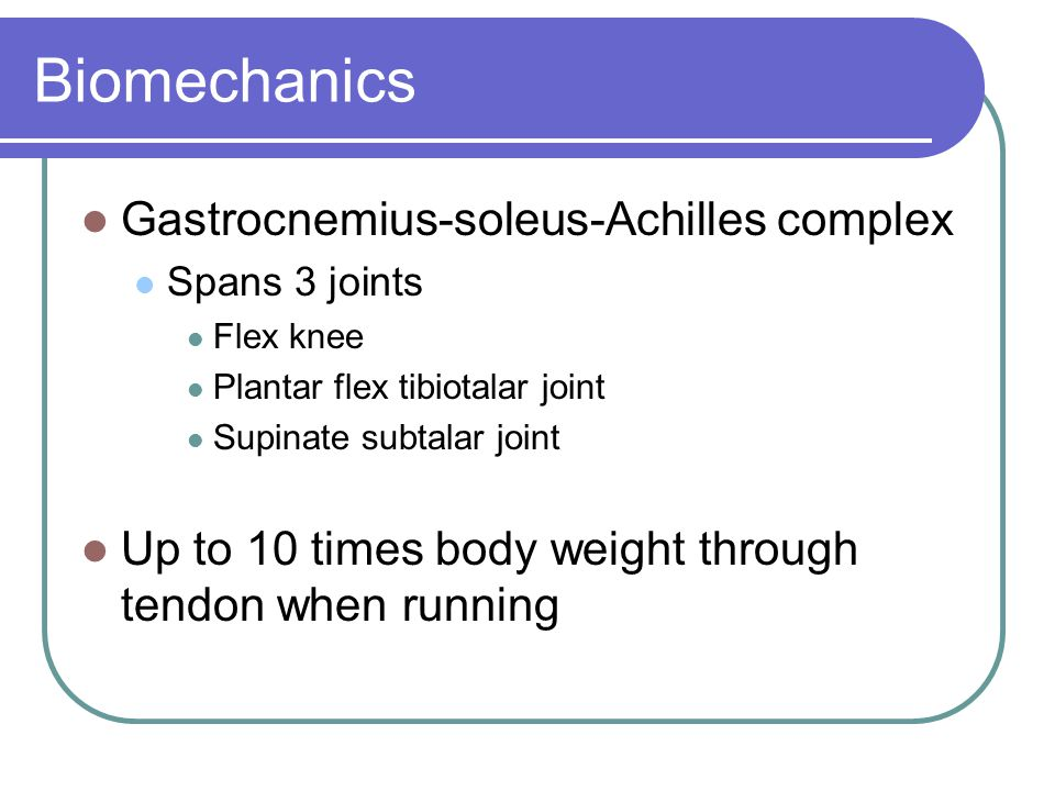 Biomechanics Gastrocnemius-soleus-Achilles complex Spans 3 joints Flex knee Plantar flex tibiotalar joint Supinate subtalar joint Up to 10 times body weight through tendon when running