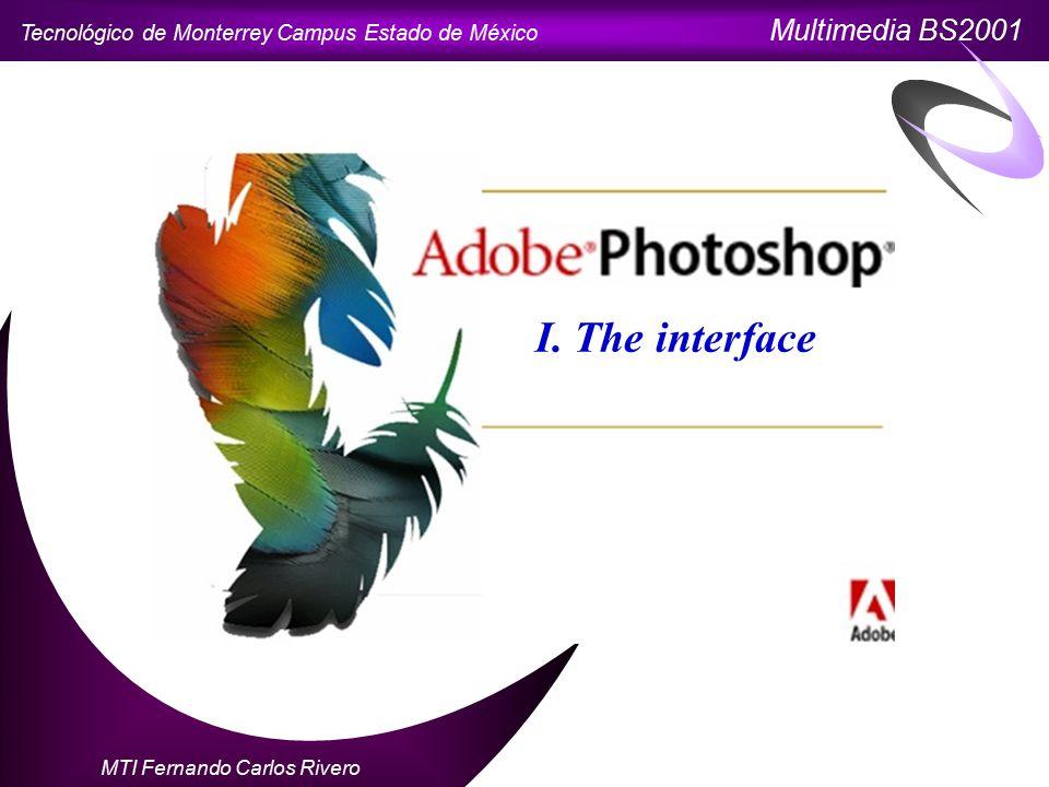Tecnológico de Monterrey Campus Estado de México Multimedia BS2001 MTI Fernando Carlos Rivero I.