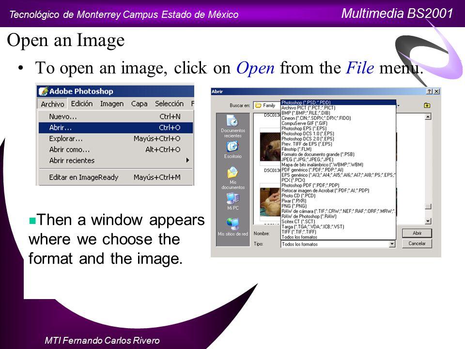 Tecnológico de Monterrey Campus Estado de México Multimedia BS2001 MTI Fernando Carlos Rivero Change an image's size Use the Image size command from the Image menu.