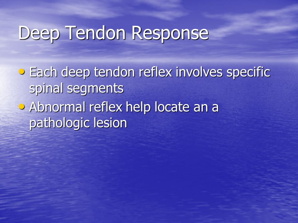Deep Tendon Response Each deep tendon reflex involves specific spinal segments Each deep tendon reflex involves specific spinal segments Abnormal reflex help locate an a pathologic lesion Abnormal reflex help locate an a pathologic lesion