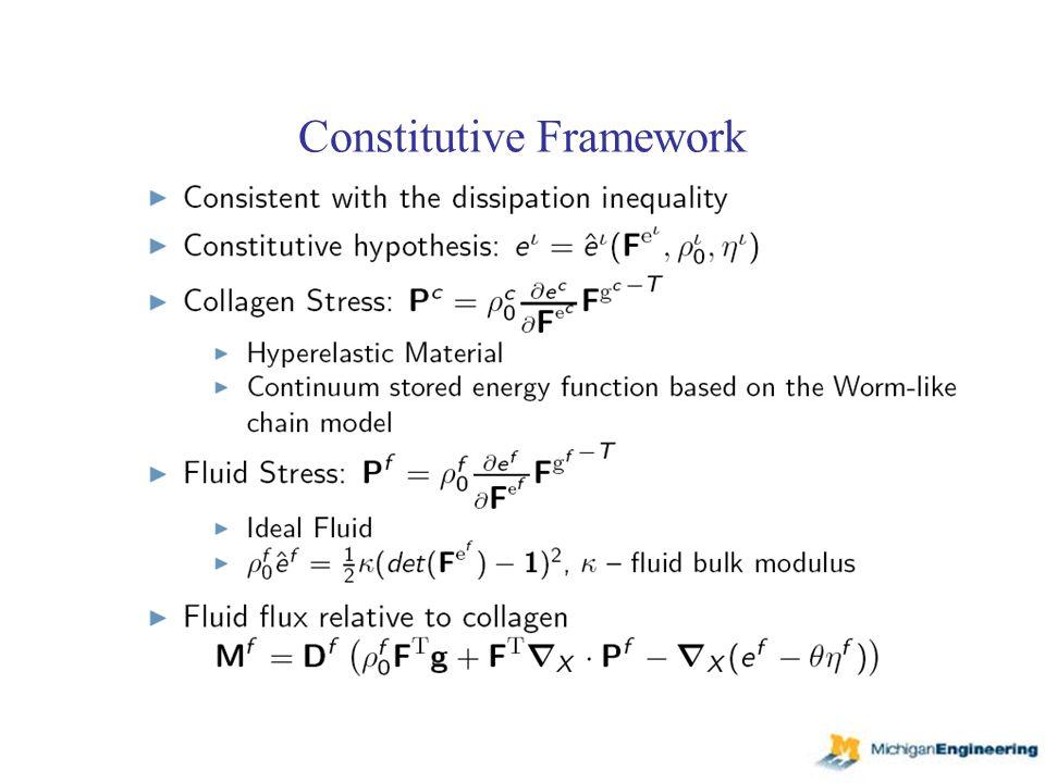 Constitutive Framework