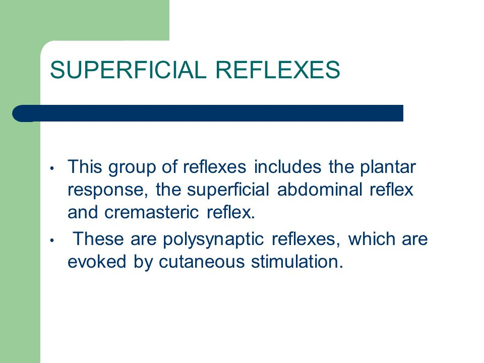 SUPERFICIAL REFLEXES This group of reflexes includes the plantar response, the superficial abdominal reflex and cremasteric reflex. These are polysyna