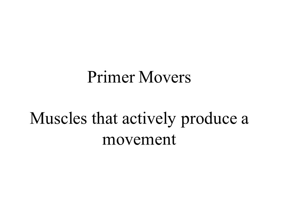 Primer Movers Muscles that actively produce a movement