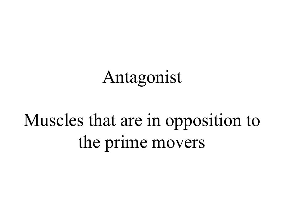 Antagonist Muscles that are in opposition to the prime movers