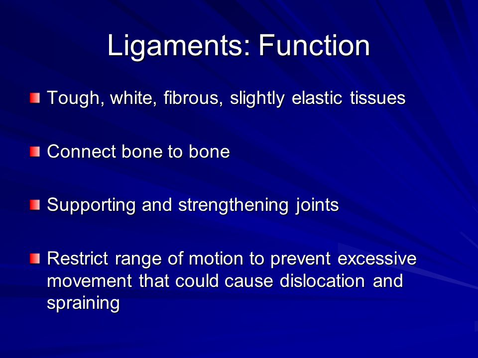 Ligaments: Function Tough, white, fibrous, slightly elastic tissues Connect bone to bone Supporting and strengthening joints Restrict range of motion to prevent excessive movement that could cause dislocation and spraining