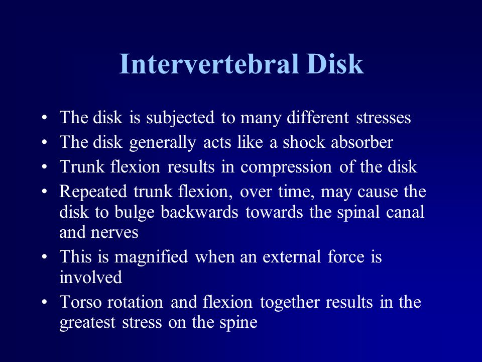 Intervertebral Disk The disk is subjected to many different stresses The disk generally acts like a shock absorber Trunk flexion results in compression of the disk Repeated trunk flexion, over time, may cause the disk to bulge backwards towards the spinal canal and nerves This is magnified when an external force is involved Torso rotation and flexion together results in the greatest stress on the spine