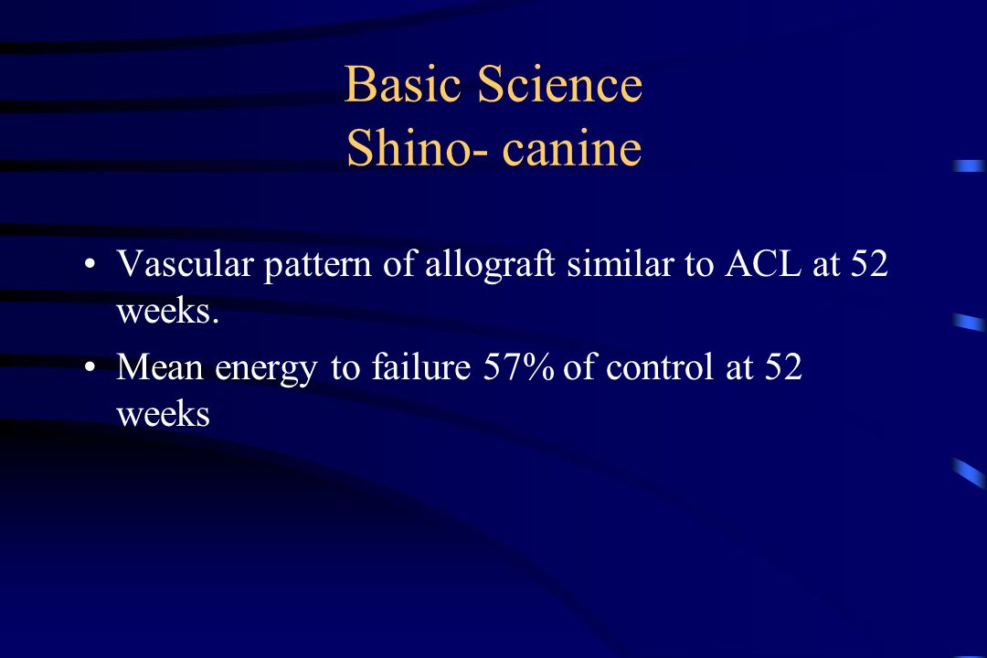 Basic Science Shino- canine Vascular pattern of allograft similar to ACL at 52 weeks.