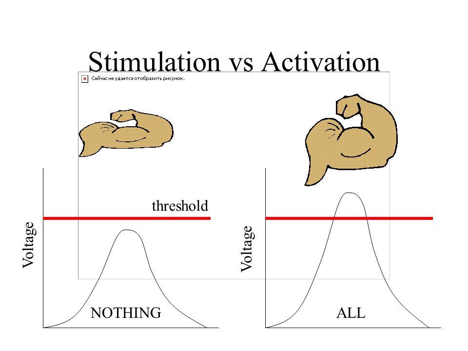Stimulation vs Activation Voltage threshold ALLNOTHING