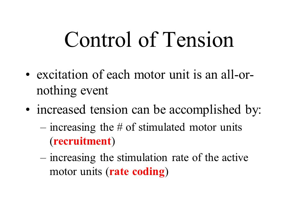Control of Tension excitation of each motor unit is an all-or- nothing event increased tension can be accomplished by: –increasing the # of stimulated motor units (recruitment) –increasing the stimulation rate of the active motor units (rate coding)