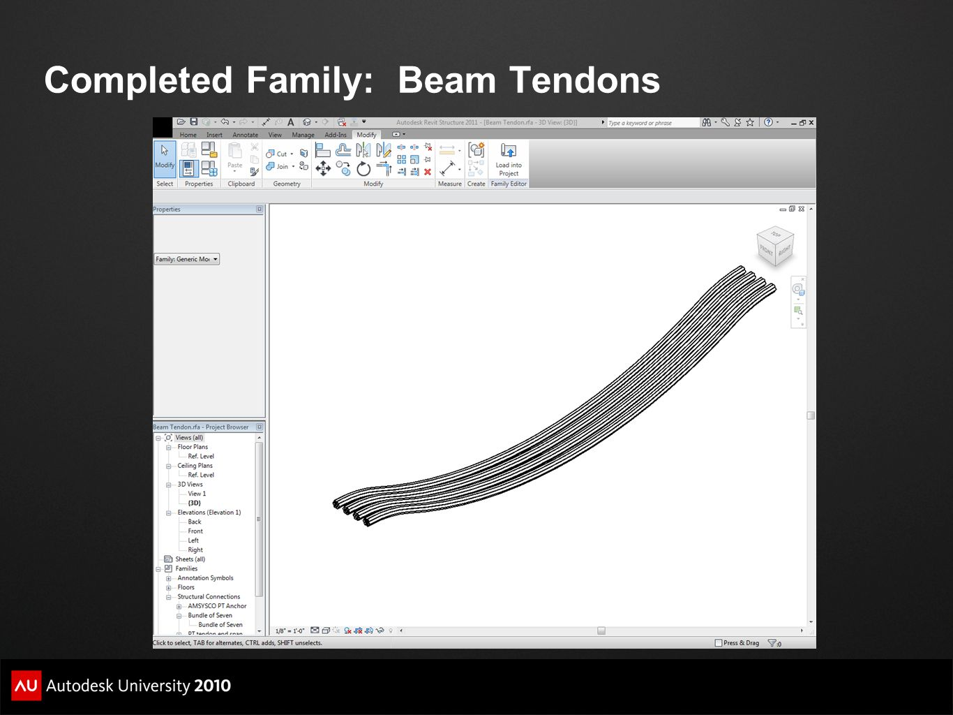 Completed Family: Beam Tendons