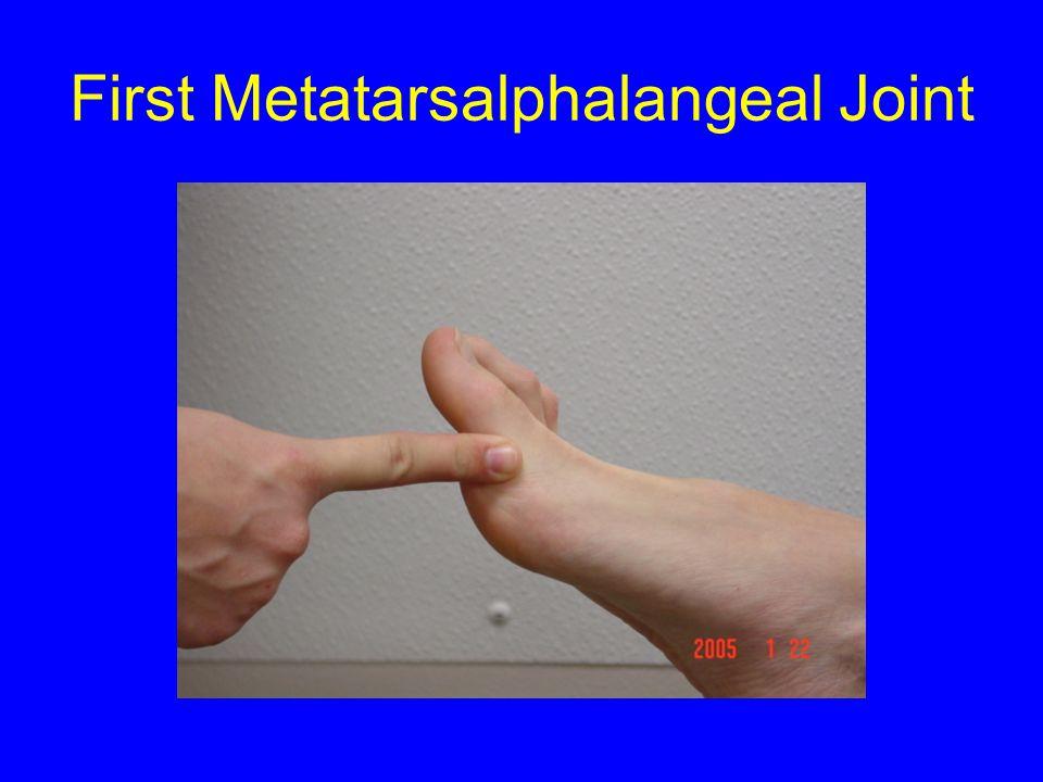 First Metatarsalphalangeal Joint
